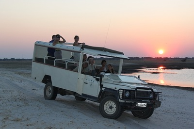 Game drive in the late afternoon, Chobe River.