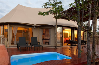 Luxury tented accommodation and private pool at The Elephant Camp, Victoria Falls