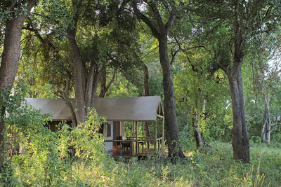 Luxury tented accommodation at Shinde Camp, Okavango Delta